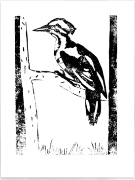 Japanese Woodcuts - Lino Cut Bird - Drawing on History - Homeschool Art Curriculum