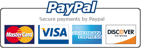 secure payments by paypal - visa - mastercard - american express - discover - Drawing on History Art Curriculum